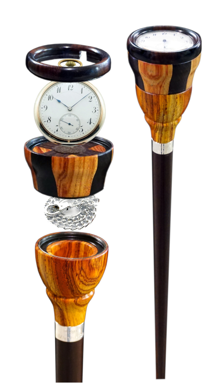 cane, wood canes, watch cane, watch swiss cane, wood walking stick, walking sticks, walking stick collector, walking sticks collector, walking cane collector, walking canes collector, luxury cane, luxury canes, luxury walking canes, luxury walking sticks, prestige canes, contemporary canes, mooie wandelstok, luxe wandelstok, exclusieve wandelstok, prestigieuze wandelstok, hout wandelstok